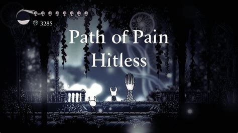 Hollow Knight | Path of Pain (Hitless) - YouTube