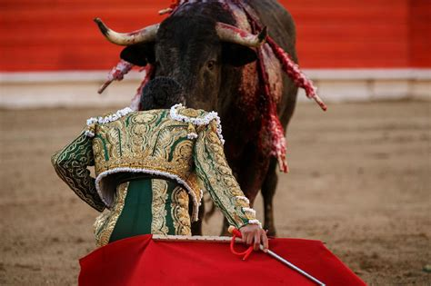 Bull Fighting Wallpapers Backgrounds